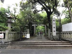 hikawa1