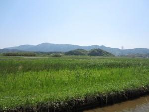 asakuma1