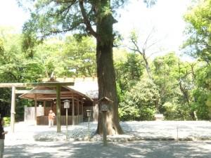 tukiyomi1