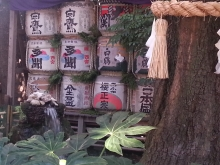 辰巳の辻占-201301東京大神宮2